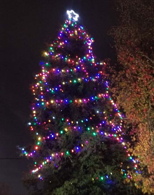 Doctors Hospital of Manteca Hosts Tree of Lights Ceremony